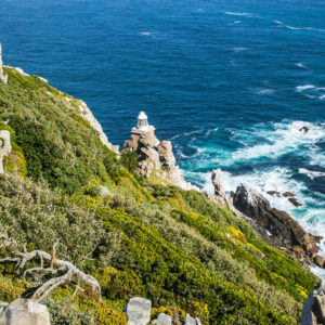 Cape Point & Peninsula